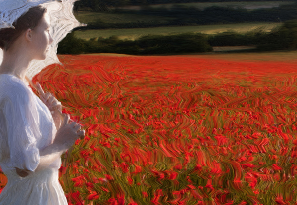 Poppies- from Kate Jackson Art